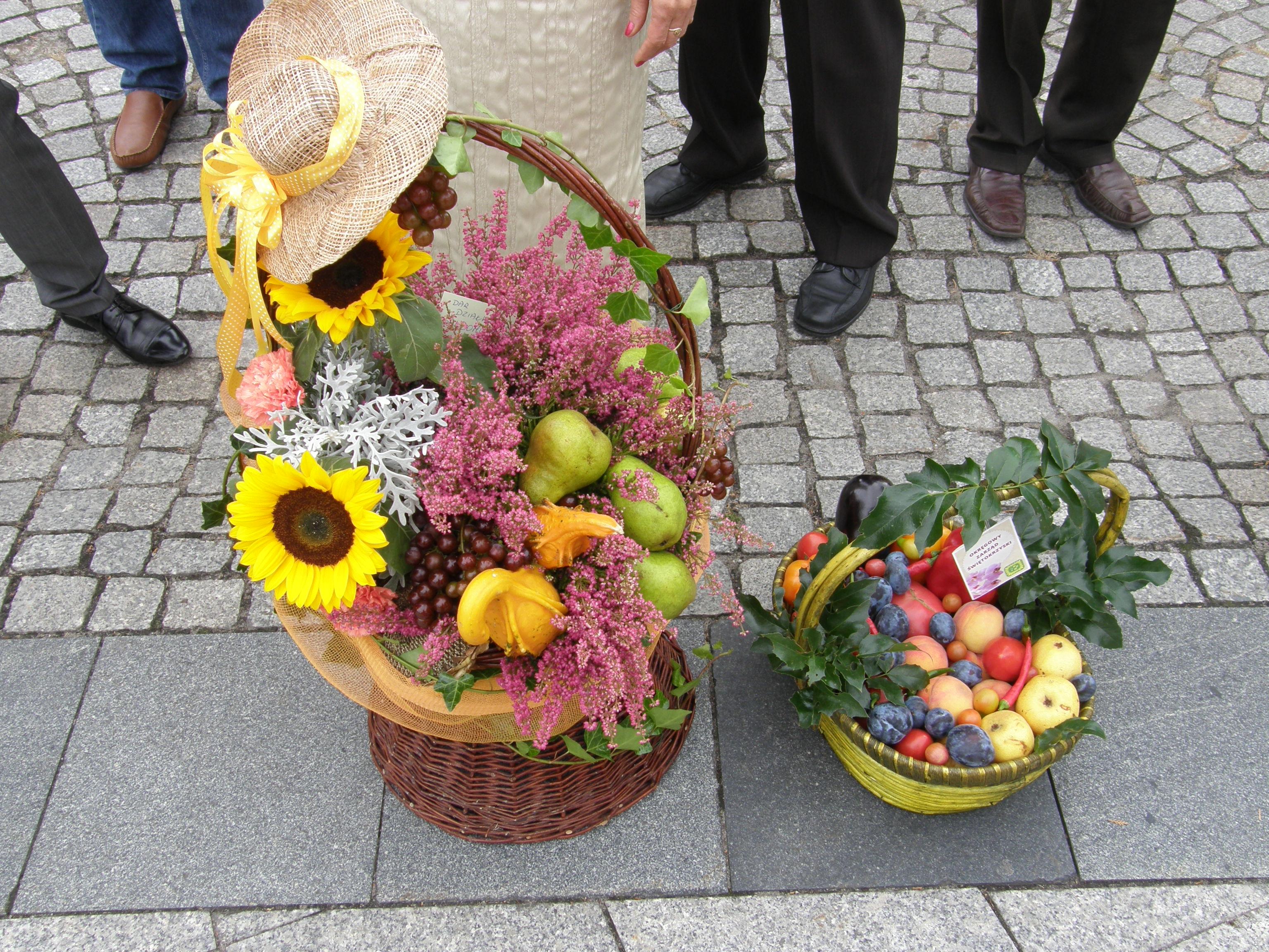 Znalezione obrazy dla zapytania plony dożynkowe owoce i warzywa